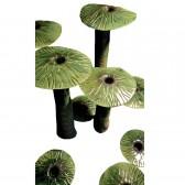 Naturalia VN dekoracja Fos Ceramiche